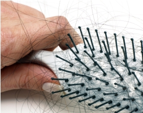 Loose Hair in a Brush